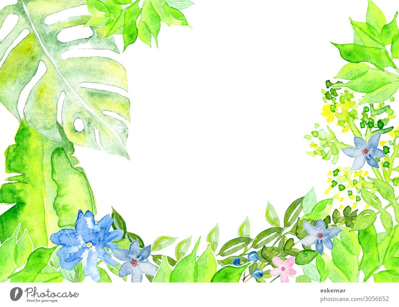 Nature Summer Plant Green White Flower Leaf Blossom Spring Grass Art Copy Space Esthetic Bushes Blossoming Painting and drawing (object)