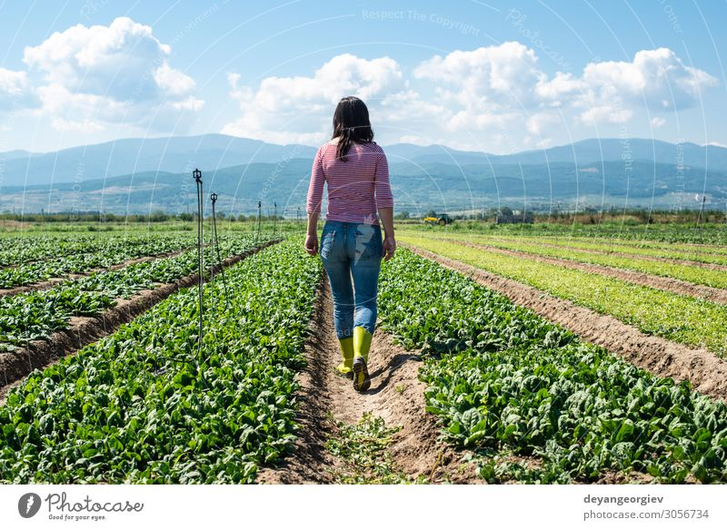 Woman with green boots walking on spinach field. Vegetable Vegetarian diet Diet Garden Adults Environment Plant Leaf Growth Fresh Natural Green Spinach Farmer