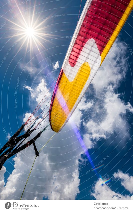 flight Joy Happy Leisure and hobbies Paragliding Air Sky only Clouds Sun Sunlight Summer Beautiful weather Paraglider Rope Movement Flying Strong Blue Yellow