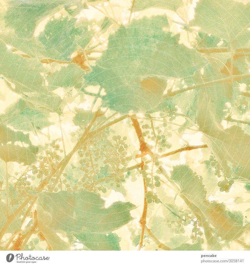 Summer Plant Garden Happiness Illustration Vine Pastel tone Vine leaf