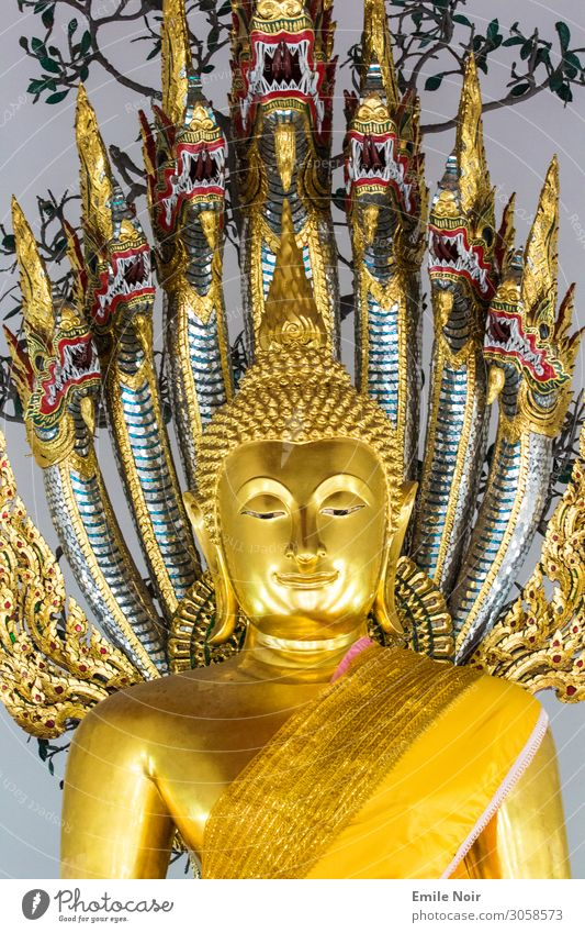 Vacation & Travel Far-off places Architecture Religion and faith Tourism Tourist Attraction City trip Sightseeing Statue Temple Buddha Buddhism
