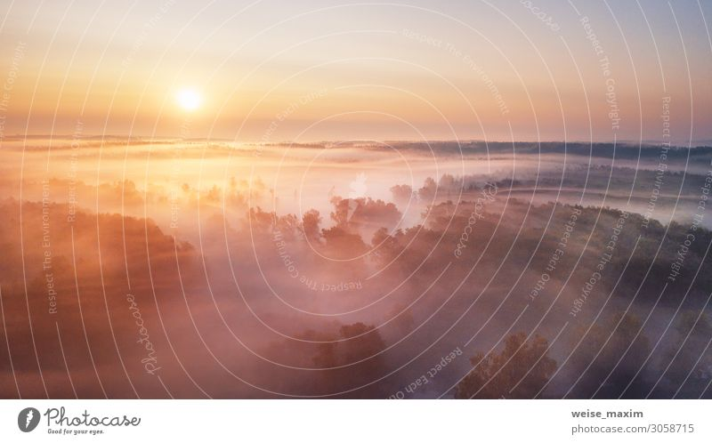 Summer nature landscape aerial panorama. Foggy morning Calm Vacation & Travel Tourism Trip Adventure Far-off places Freedom Summer vacation Environment Nature