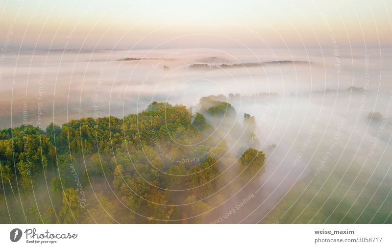 Morning fog over river, meadow and forest. Nature sunlight scene Calm Vacation & Travel Tourism Trip Adventure Far-off places Freedom Summer Environment