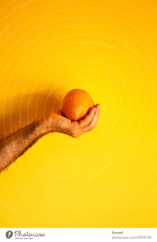 orange in hand on yellow wall Fruit Lifestyle Design Human being Man Adults Arm Hand Fingers Nature To enjoy Fresh Yellow Colour people Illustration conceptual