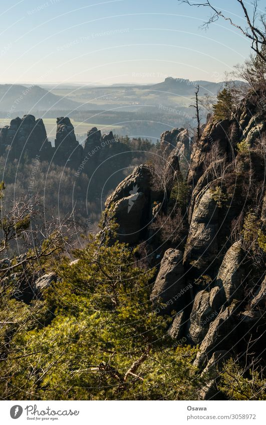 Saxon Switzerland Landscape Mountain Rock Nature Highlands Rock formation Forest Tree Elbsandstone mountains Saxony Hiking Climbing Mountaineering