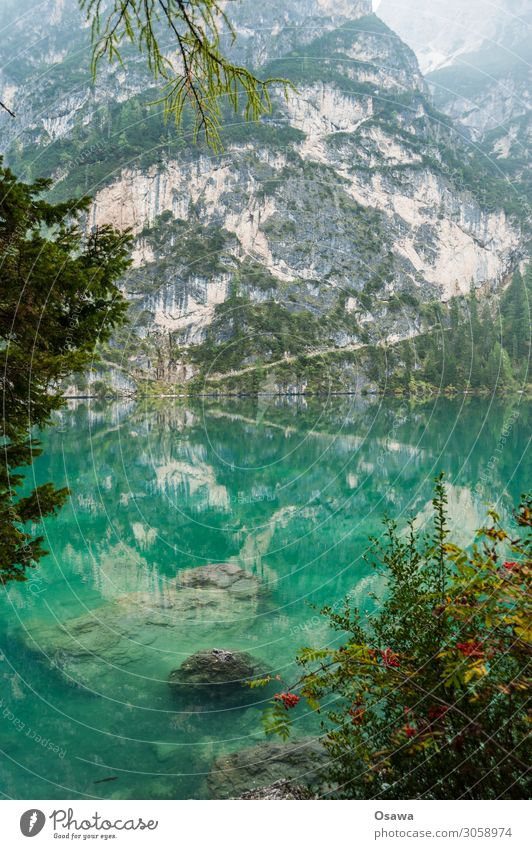 Braies Wild Lake / Lago di Braies Environment Nature Landscape Tree Water Sky Clouds Fog Alps Mountain South Tyrol Pragser Wildsee Lake Prags Wildsee Hiking