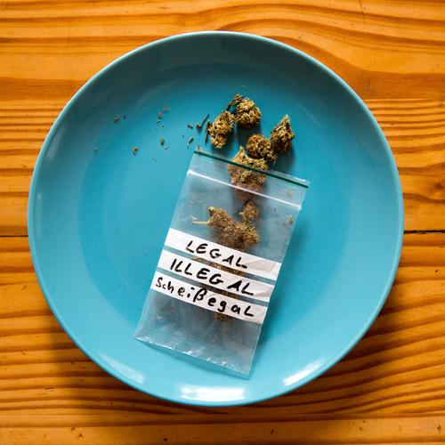 Cannabis busy ... Plate Lifestyle Alternative medicine Intoxicant Relaxation Hemp Plastic bag Characters Utilize To enjoy Esthetic Authentic Rebellious Yellow