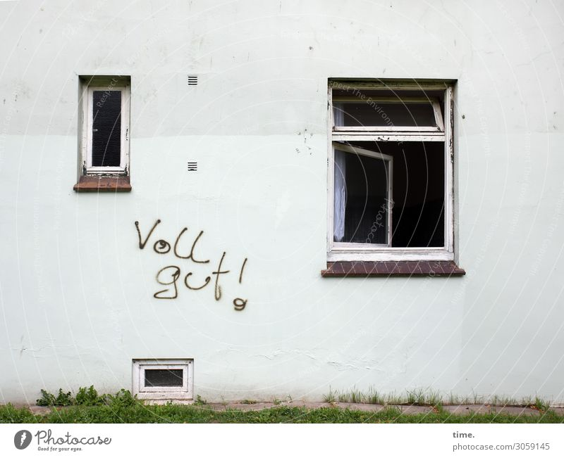 strategy Grass Wilhelmsburg House (Residential Structure) Wall (barrier) Wall (building) Window Characters Graffiti Sharp-edged Broken Rebellious Trashy
