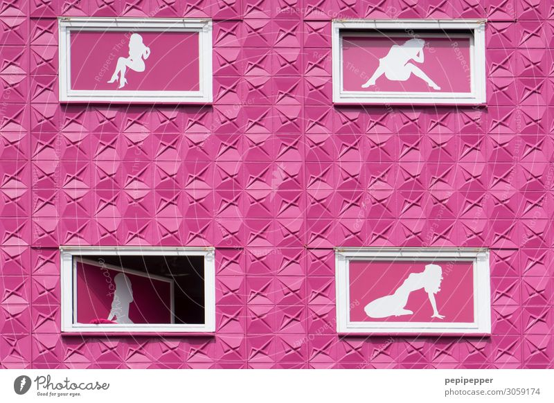 Human being Eroticism House (Residential Structure) Window Architecture Wall (building) Feminine Building Wall (barrier) Facade Pink Body Sex Hamburg Sign