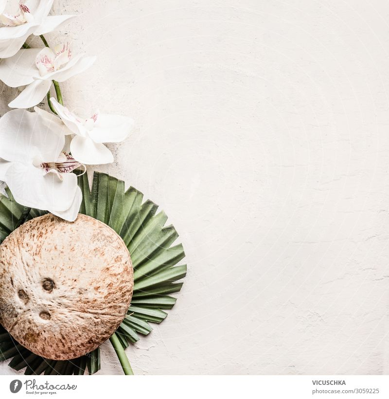 Whole coconut on tropical leaves with flowers Style Design Beautiful Healthy Healthy Eating Table Nature Flower Leaf Background picture Blog Coconut Tropical