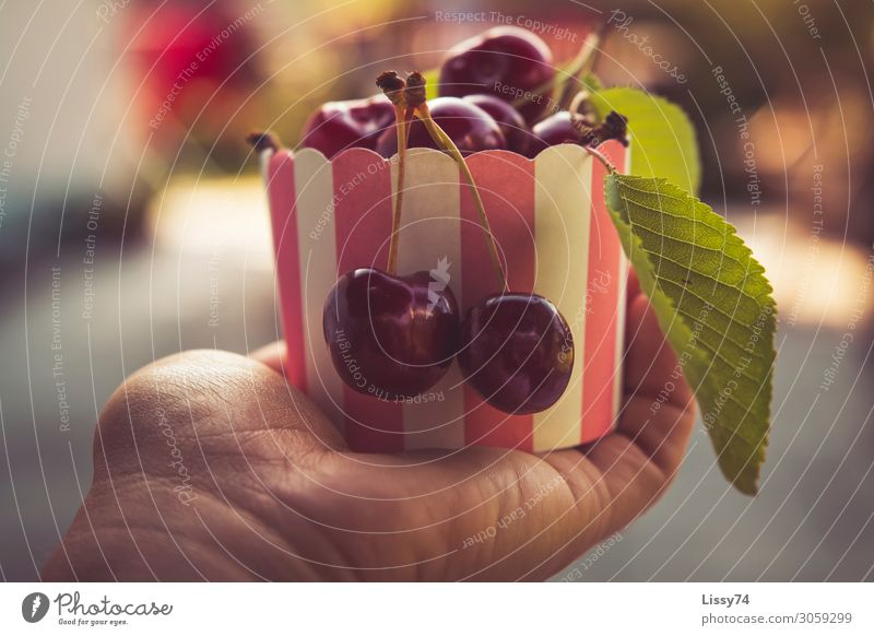 Cherries Food Fruit Cherry Nutrition Bowl Healthy Eating Parenting Hand Beautiful weather Diet Sweet Red Joy To enjoy Colour photo Exterior shot Close-up