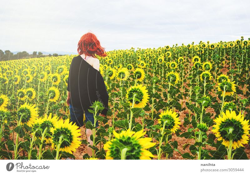 Back view of a redhead young woman in a field of sunflowers Joy Adventure Summer Human being Feminine Woman Adults Landscape Autumn Flower Red-haired To enjoy