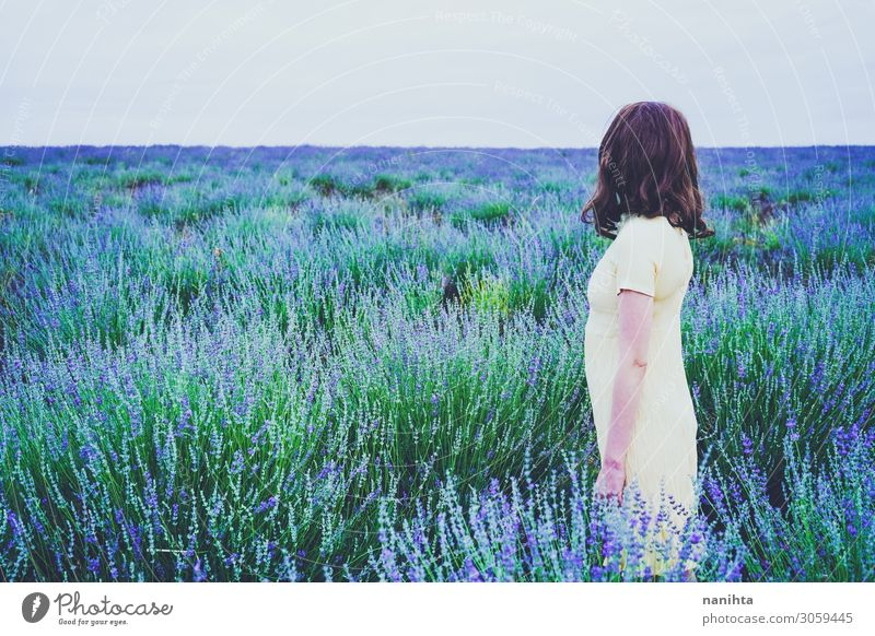 Back view of a young woman in a field of lavender Lifestyle Relaxation Fragrance Adventure Summer Human being Feminine Woman Adults Youth (Young adults) 1