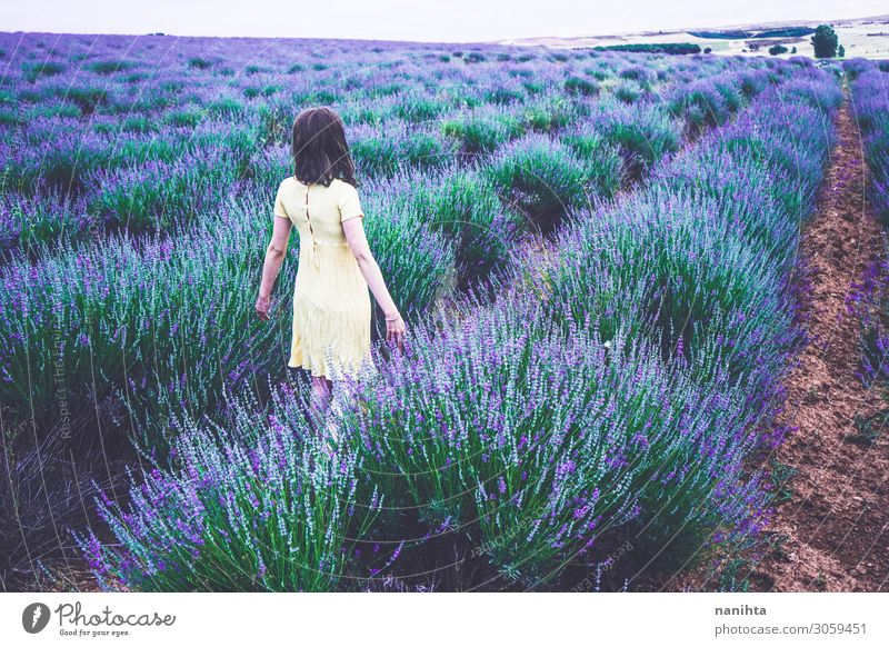 Back view of a young woman in a field of lavender Woman Human being Nature Youth (Young adults) Summer Beautiful Green Landscape Flower Relaxation Clouds