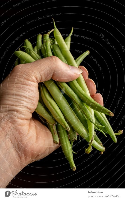 A handful of runner beans Food Vegetable Nutrition Organic produce Vegetarian diet Healthy Eating Man Adults Hand Fingers Work and employment Select Utilize