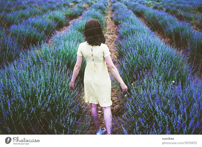 Back view of a young woman in a field of lavender Lifestyle Relaxation Fragrance Adventure Summer Human being Feminine Young woman Youth (Young adults) Woman