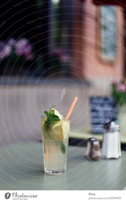 Delicious lemonade Cold drink Lemonade Fresh Mint Self-made Blade of grass Café Bar Gastronomy Table Restaurant outdoor area terrace Exterior shot Refreshment