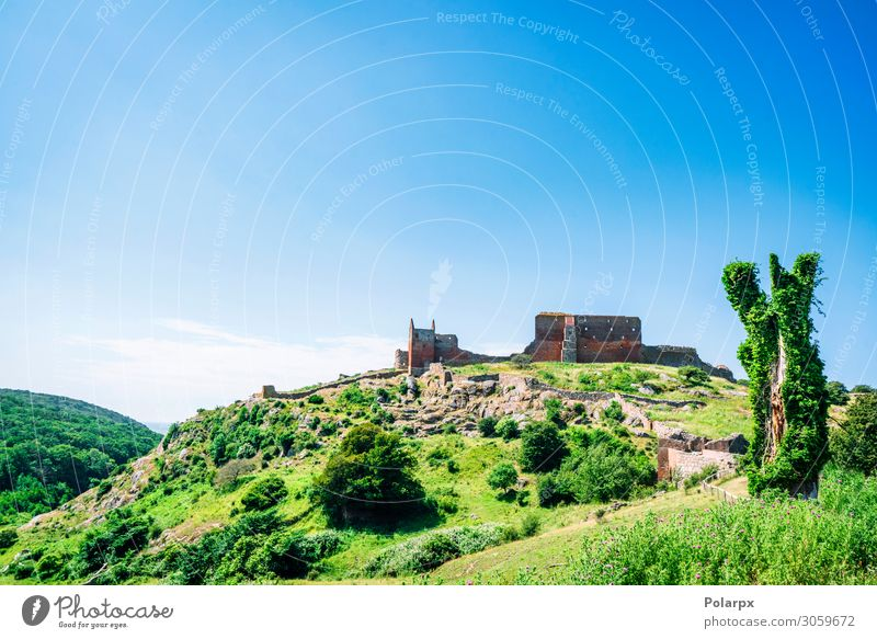 Ancient castle on a green hill with trees Vacation & Travel Tourism Summer Island Mountain Nature Landscape Sky Grass Forest Castle Ruin Building Architecture
