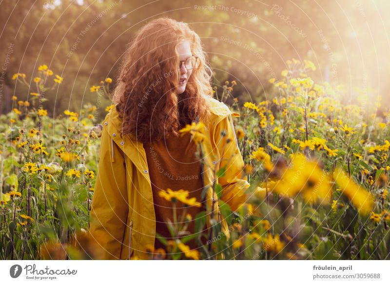 on Sundays Summer Feminine Young woman Youth (Young adults) 1 Human being 18 - 30 years Adults Nature Plant Beautiful weather Park Red-haired Long-haired Curl