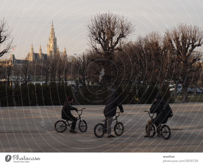 BMX in Vienna Joy Leisure and hobbies Cycling BMX bike Human being Masculine Young man Youth (Young adults) Friendship 3 18 - 30 years Adults Winter Tree
