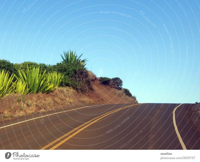 Right Curve on Maui / Hawaii Landscape Cloudless sky Summer Beautiful weather Plant Bushes Aloe Rock USA Americas Street Lane markings Blue Yellow Gray Green