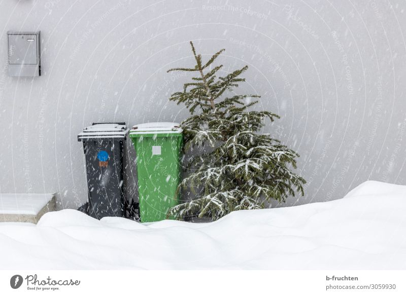 Christmas tree to pick up. Winter Snow Feasts & Celebrations Christmas & Advent Tree House (Residential Structure) Wall (barrier) Wall (building) Container