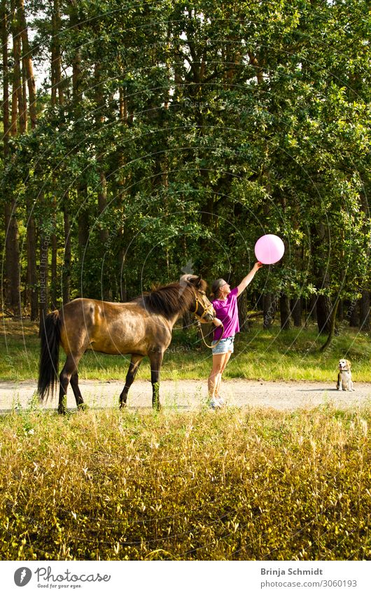 Woman Human being Vacation & Travel Nature Dog Summer Landscape Animal Joy Adults Life Movement Happy Freedom Pink Trip