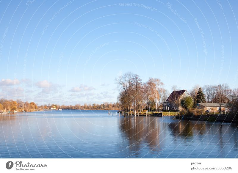 Idyll by the lake. Calm Nature Landscape Water Sky Horizon Autumn Beautiful weather Tree Lakeside River bank Outskirts House (Residential Structure) Dream house