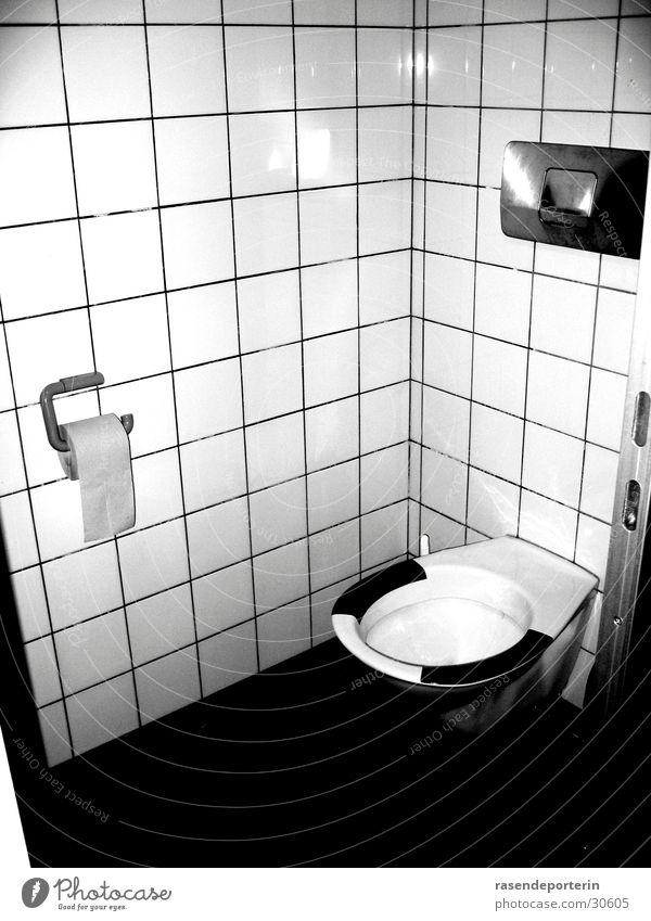 Loneliness Toilet Feces Urinate Heap Urine