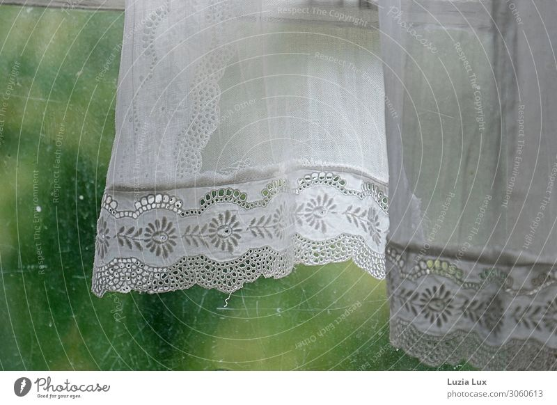 Old Beautiful Green White Window Interior design Spring Living or residing Flat (apartment) Decoration Glass Village Delicate Safety (feeling of) Lace Blow