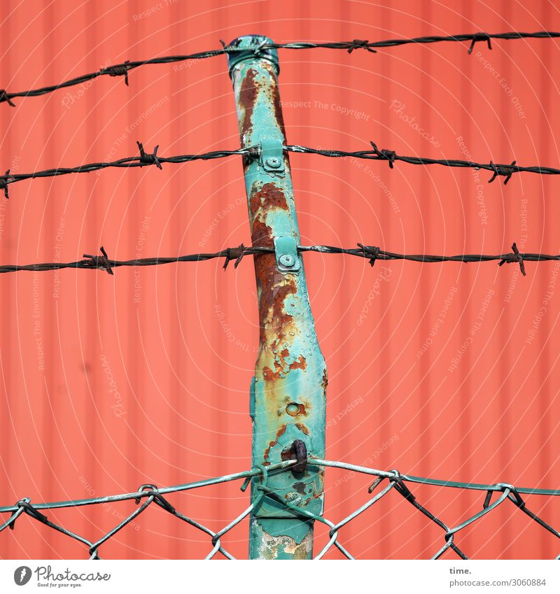 metal security Container Wire netting Wire netting fence Barbed wire Rust Metal Line Old Creepy Trashy Green Red Safety Protection Watchfulness Fear Dangerous