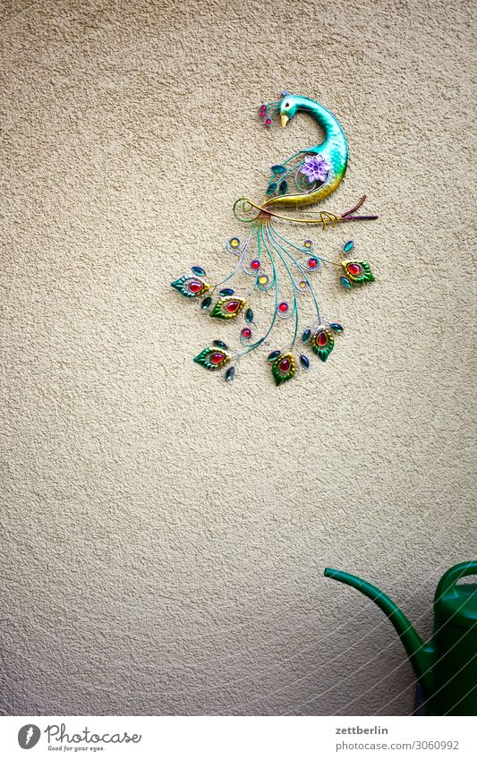 Peacock and half watering can Bird Wall decoration Decoration Jewellery Kitsch Craft (trade) Arts and crafts  Multicoloured Colour Tails Living or residing