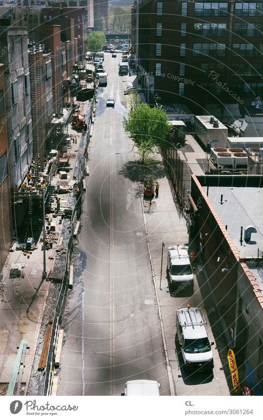 street in harlem Work and employment Profession Craftsperson Construction site Human being Beautiful weather Tree New York City Harlem