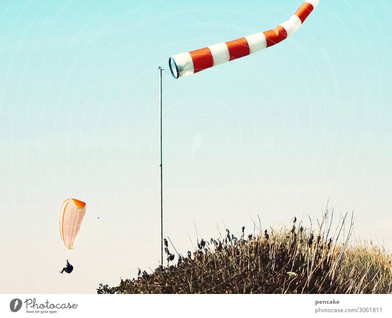 Wow! Lifestyle Joy Leisure and hobbies Nature Landscape Cloudless sky Summer Beautiful weather Wind Gale Warmth North Sea Movement Flying Paragliding Windsock