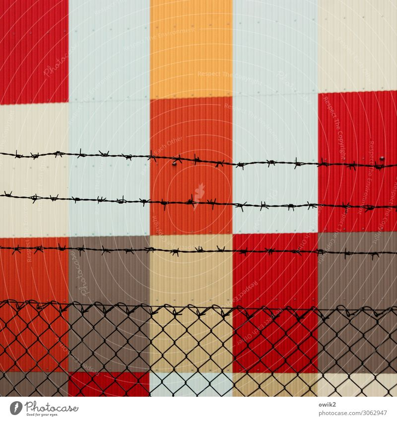 Freedom for art! Barbed wire Barbed wire fence Wire netting Wire netting fence Barrier Boundary Captured Tin sheet metal Point Thorny Brown Orange Red Bizarre