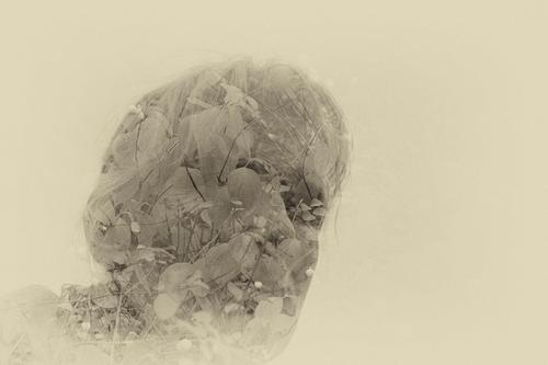valuable | man and nature Human being Woman Adults Nature Bushes Blade of grass Leaf Hair and hairstyles Emotions Contentment Calm Double exposure Filter
