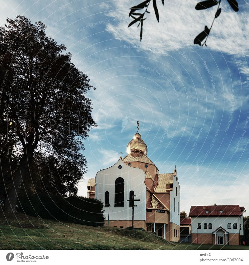 coszalin Sky Clouds Tree Grass Leaf Twig Poland Eastern Europe Small Town House (Residential Structure) Church Manmade structures Building Window Door