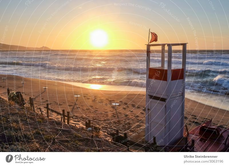 evening at the beach Vacation & Travel Tourism Summer vacation Beach Ocean Waves Nature Landscape Coast Island Sardinia Movement Natural Warmth Emotions Moody