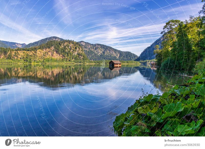 Cottage in the lake Tourism Trip Summer Summer vacation Hiking Nature Landscape Sky Beautiful weather Plant Forest Alps Mountain Lake Free Hope Idyll Calm