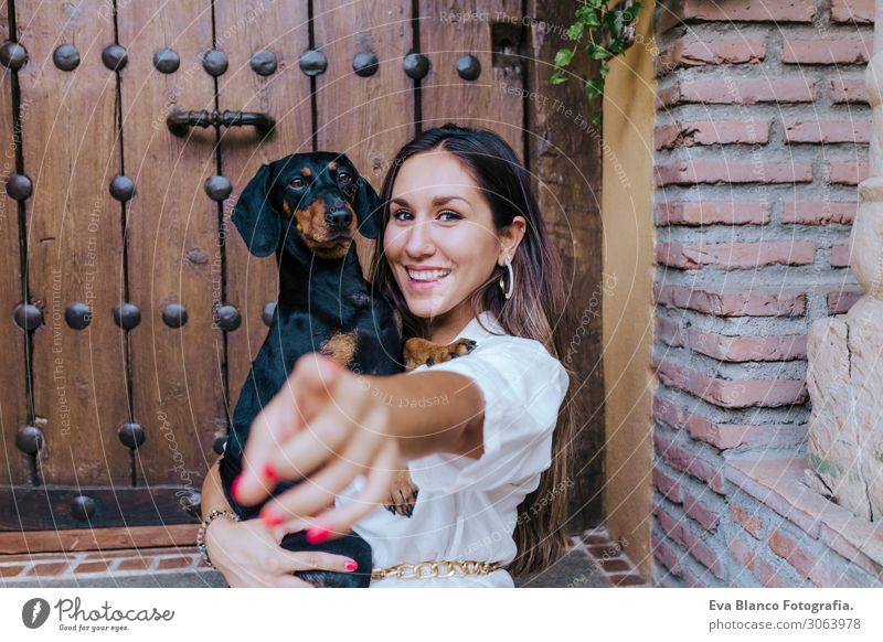 cute small sausage dog sitting with her owner at home Woman Human being Vacation & Travel Dog Youth (Young adults) Young woman Summer Beautiful White Hand