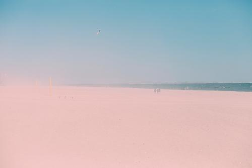 sand Vacation & Travel Tourism Trip Far-off places Freedom Summer vacation Beach Human being Environment Nature Landscape Sand Water Sky Cloudless sky