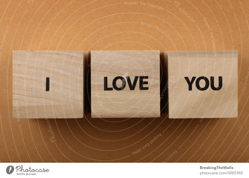 Wooden cubes with I LOVE YOU words over red Love Together Brown Above Design Vantage point Characters Communicate Signs and labeling Romance Paper 3 Word Height