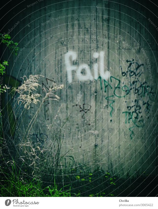fail graffiti Lifestyle Unemployment Art Painting and drawing (object) Youth culture Subculture Plant Bridge Tunnel Wall (barrier) Wall (building) Characters