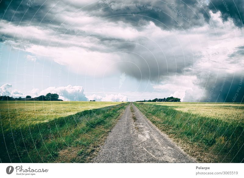 Rural landscape with dark clouds over a countyside Beautiful Vacation & Travel Trip Nature Landscape Sky Clouds Horizon Autumn Climate Weather Storm Rain Flower
