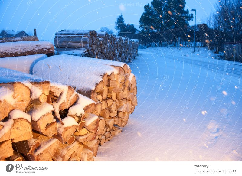 Firewood near a road illuminated Winter Snow Mountain Agriculture Forestry Construction site Environment Nature Landscape Weather Bad weather Ice Frost Snowfall
