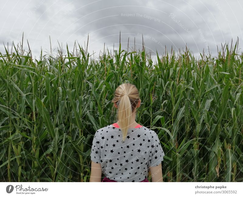 Blonde woman standing in front of cornfield Feminine Stand Maize field Woman braid Nature natural Field Agriculture Organic farming Growth Colour photo