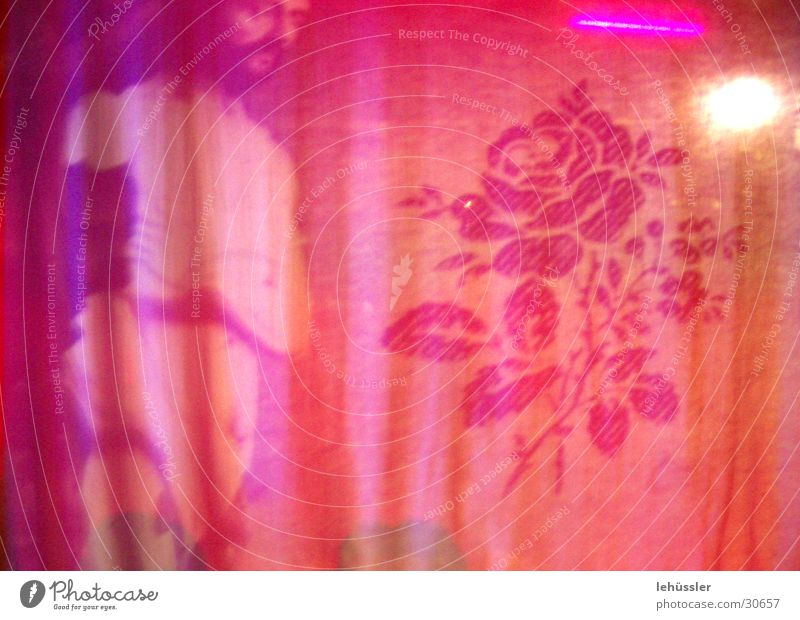 soft facade Pink Rose Man Exhibition Rag Shadow Drape Art Sculpture Light Interior shot