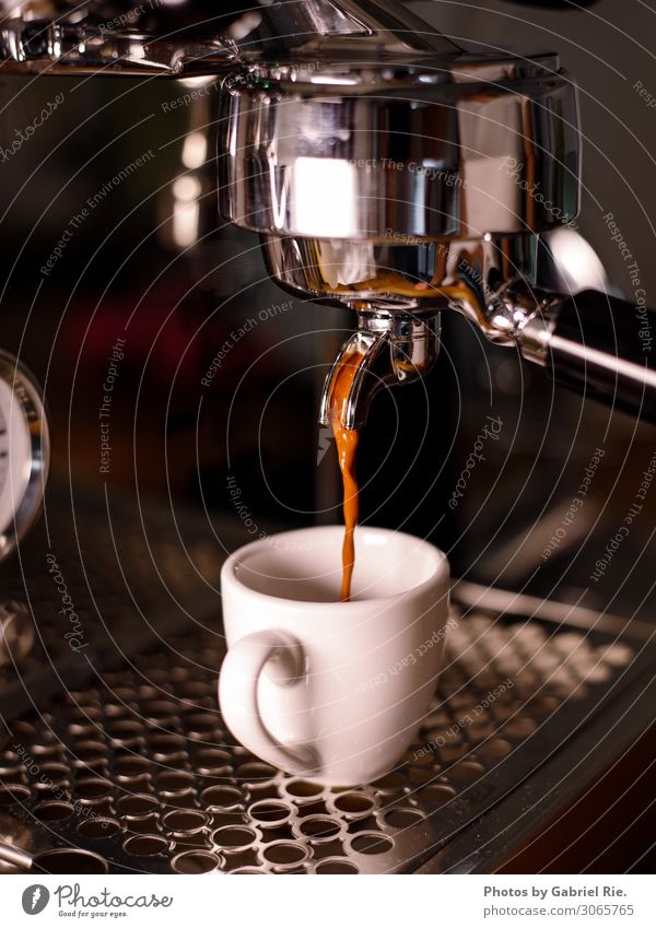 Espresso from the sieve carrier machine Dessert Coffee Coffee cup To have a coffee Coffee break Coffee bean Coffee maker Espresso machine Italian Food Italy