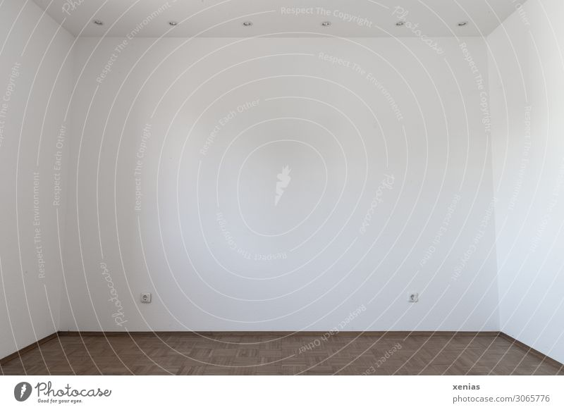 White Wall (building) Wall (barrier) Brown Flat (apartment) Room Empty Large Floor covering Parquet floor Socket Vacancy Ceiling Free space Spacious Lamp holder