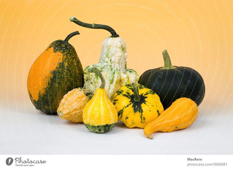 pumpkins Vegetable Pumpkin Nutrition Vegetarian diet Yellow Healthy Food Crops Deserted Studio shot Colour photo Interior shot